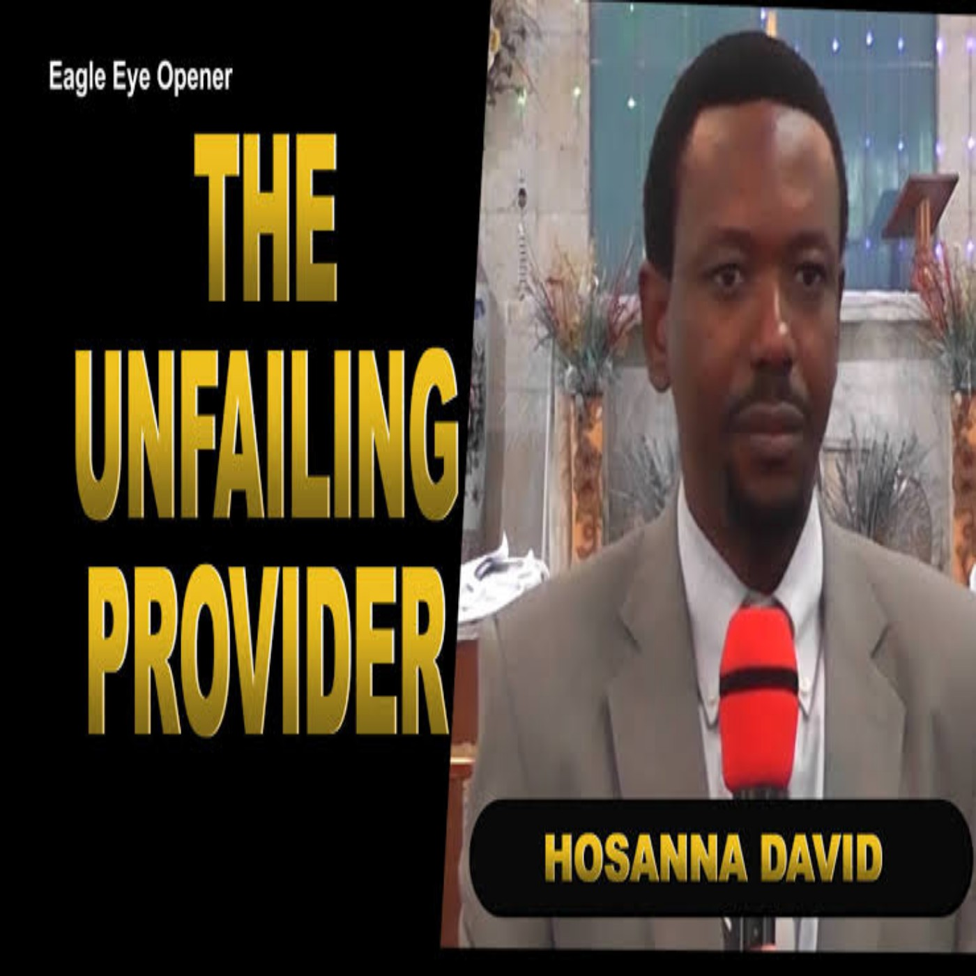 The Unfailing Provider Image